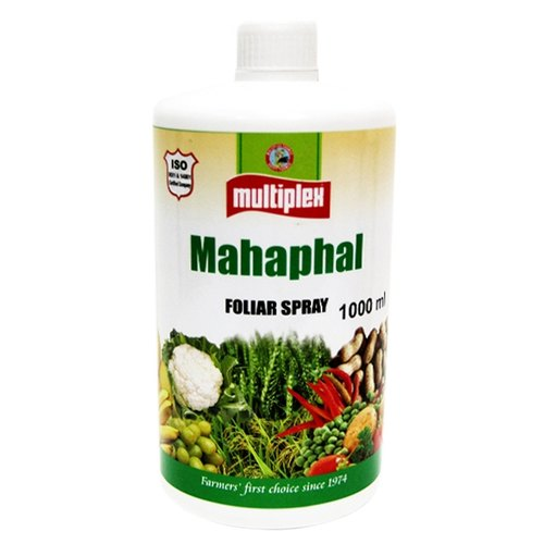 mahaphal-buy-online-from-sbagency.co.in